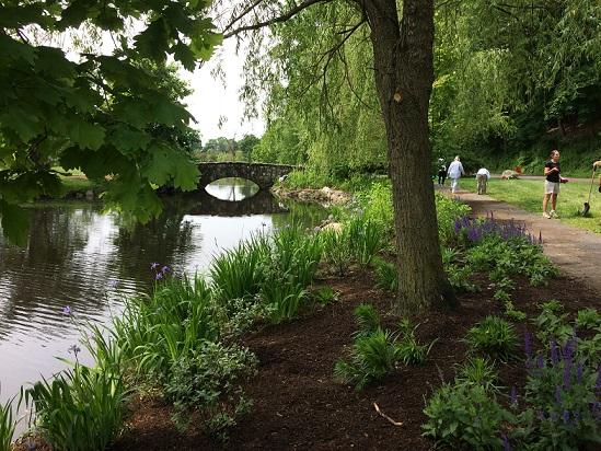 Binney Park plantings
