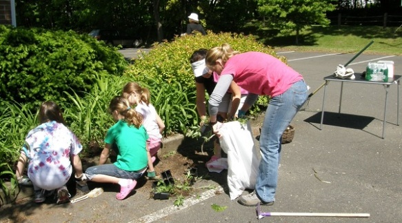 Scouts planting